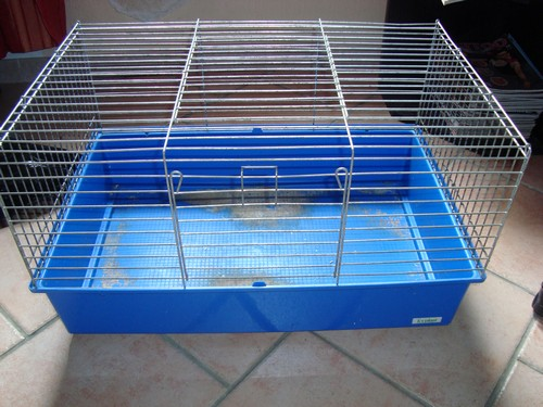 Cage Dsc08612