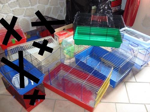 Cage Dsc08614