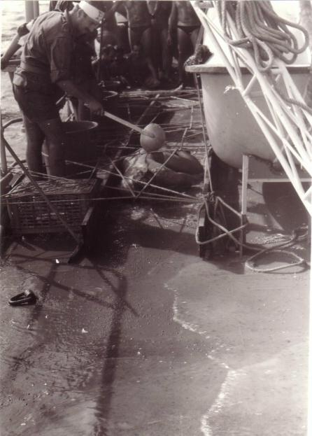 [ Les traditions dans la Marine ] LE PASSAGE DE LA LIGNE - ÉQUATEUR (Sujet unique) - Page 5 Passag11