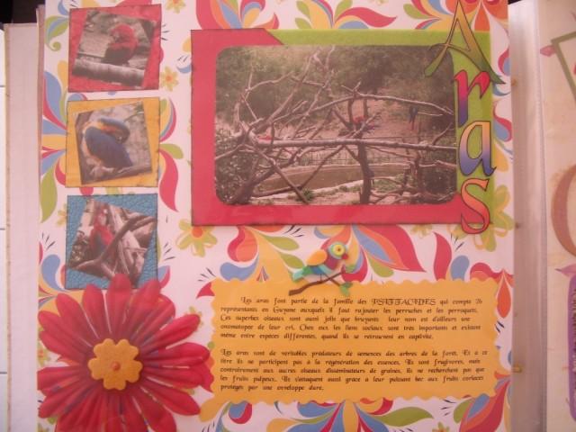 galerie de stephanie - Page 2 Gedc0011