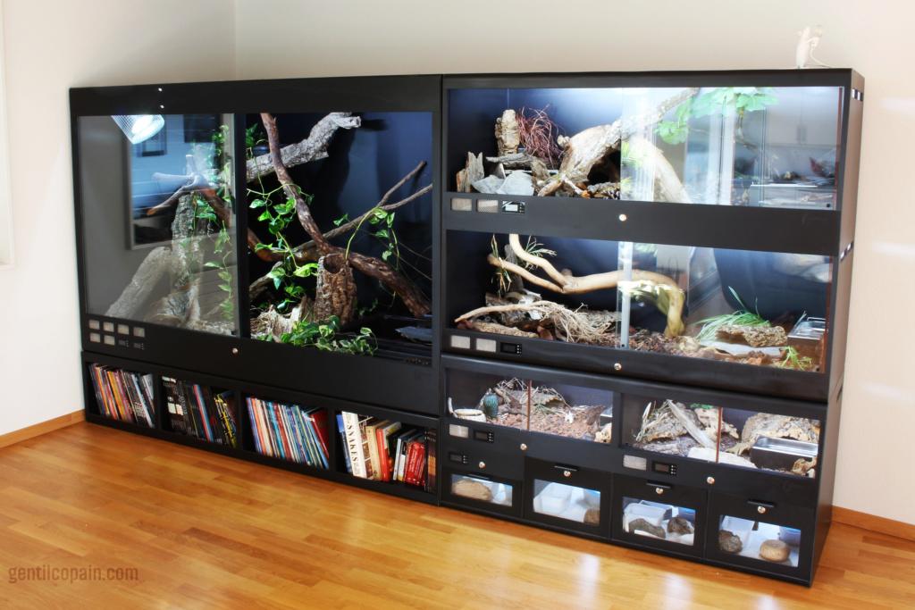 Mes Installations de chez ReptiliumBox Terrar10