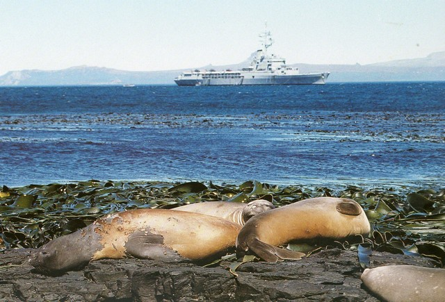 [Campagne] KERGUELEN - Page 2 Img01110