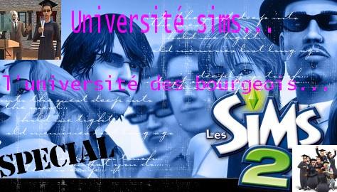 University sims