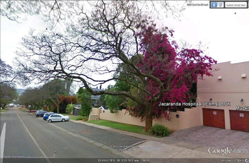 [AFRIQUE DU SUD] Pretoria, capitale d'un pays en profond changement Sans_t85