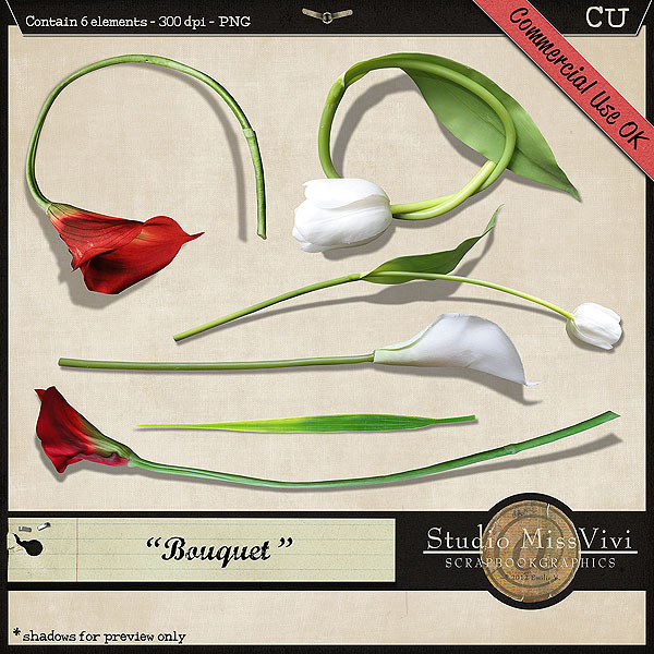 "{MissVivi} CU ""Bouquet"" et 4 ""Wedding Templates"" Missvi28"