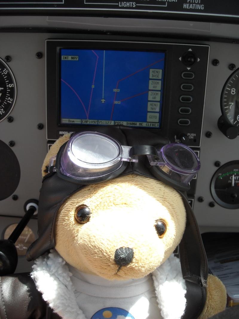 Les vols de la mascotte - Page 6 Dscn0013