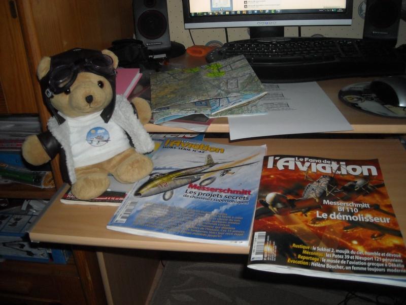 Les vols de la mascotte - Page 6 Dscn0211