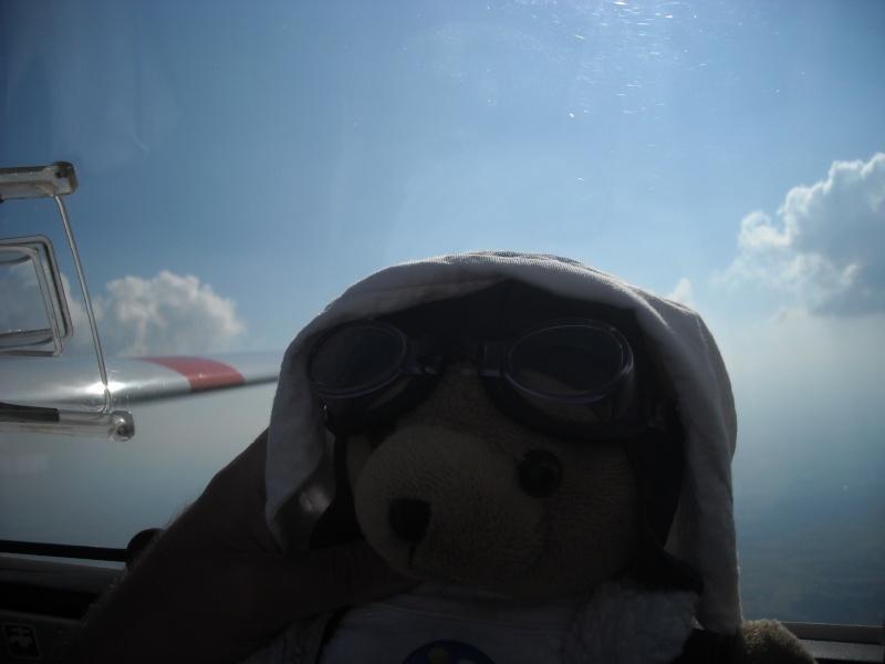 Les vols de la mascotte - Page 6 Dscn0216