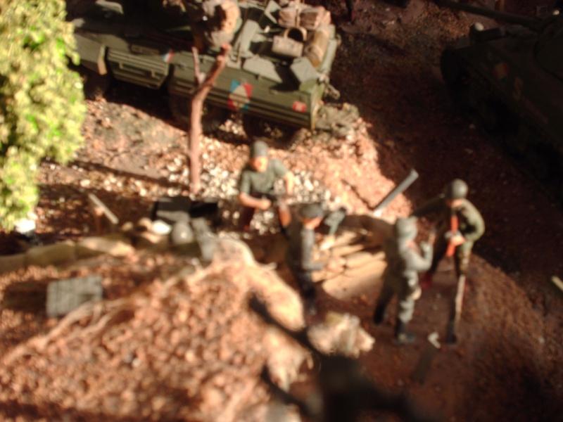 diorama 1ere Armée française. Hpim1311