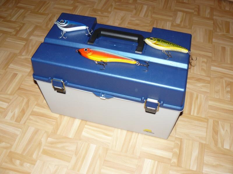 Bagagerie pour big bait P1060810