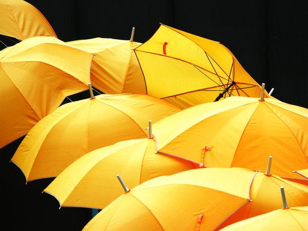 Kisobrani Yellow10