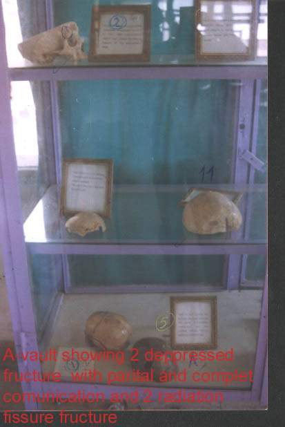 forensic museum (1) 15881517