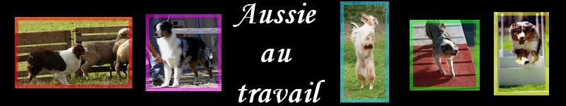 Aussie-au-travail