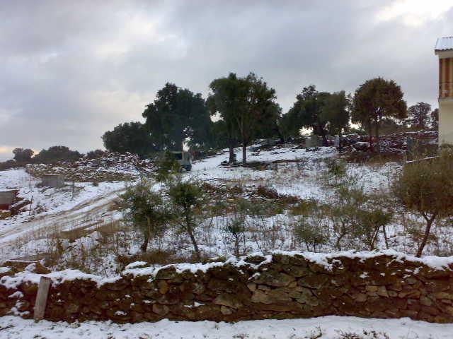 Castedo Branquinho/ Neve 10012013