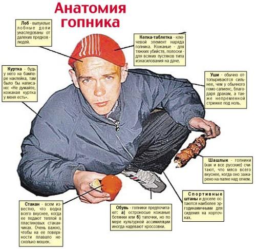 Анатомия гопника)) 7177510
