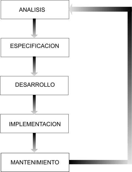 TEMA 1 - ETAPAS DEL CICLO DE DESARROLLO DEL SOFTWARE Ciclod11