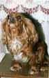 АВТОРСКИЕ СТАТЬИ ИНТЕРЭКСПЕРТА МАРКОВОЙ Л.А. . © Copyright Маркова Людмила  345-411