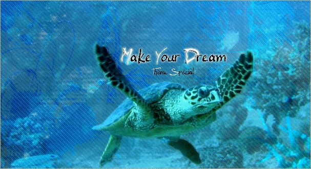 Make Your Dream