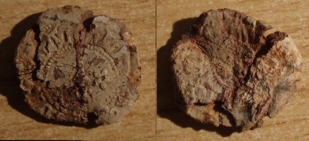 Precinto mercantil del s. XVI-XVII Plom10