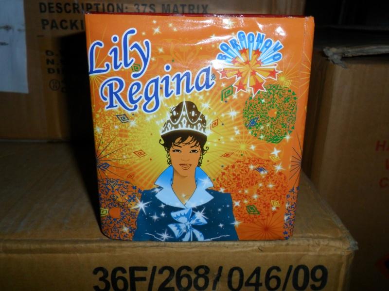 Lily regina Ok_l10