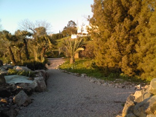 Jardin botanique de Nice en hiver 205210
