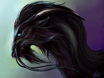 Les écuries de Galathé Animal14