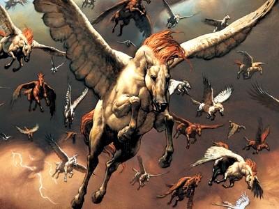 Les écuries de Galathé Animal16