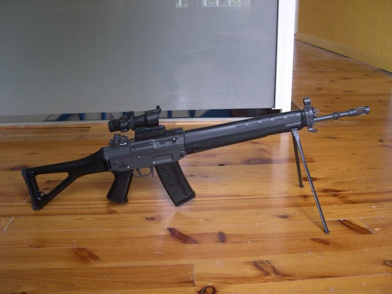Review Sig 550 JG Dscn0019