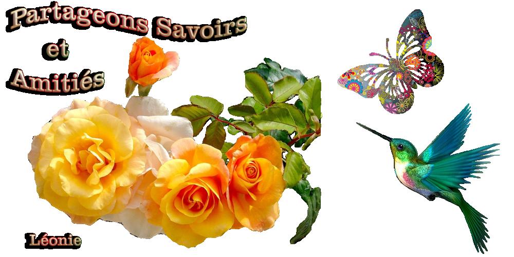 Partageons Savoirs Et Amities