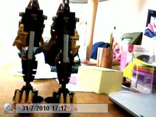 [Blog] Projet: Créer une armée de rahi. Pictur12