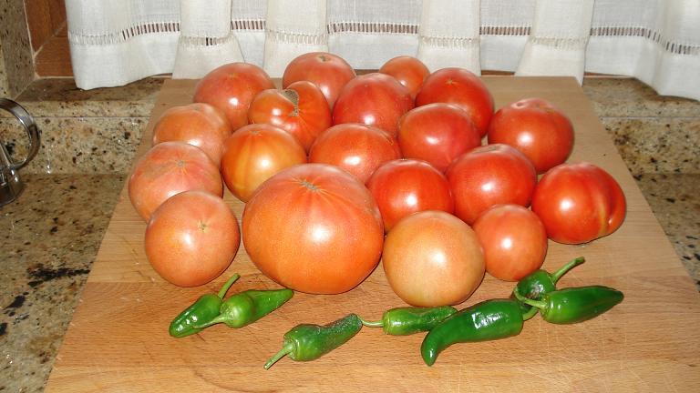 Mi mini huerta Tomata10