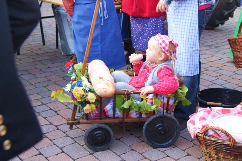 La Musique Harmonie de Wangen à la fête des vendanges de Marlenheim le 21 octobre 2012 Fate_d35
