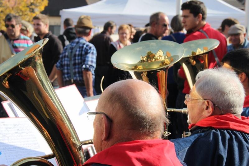 La Musique Harmonie de Wangen à la fête des vendanges de Marlenheim le 21 octobre 2012 Fate_d81