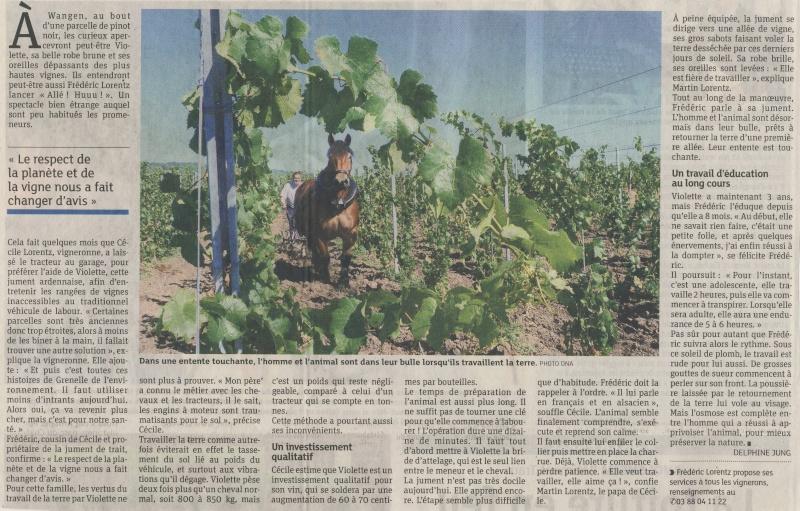 Vins et Crémant d'Alsace Thierry- Martin - Page 3 Image142