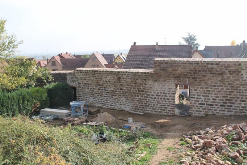 Chantier d'insertion pour la restauration du mur d'enceinte de Wangen - Page 2 Img_9938