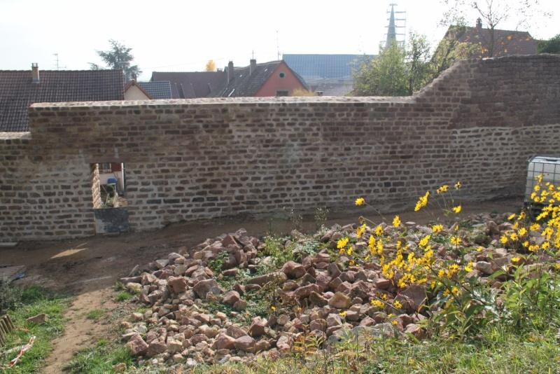 Chantier d'insertion pour la restauration du mur d'enceinte de Wangen - Page 2 Img_9939
