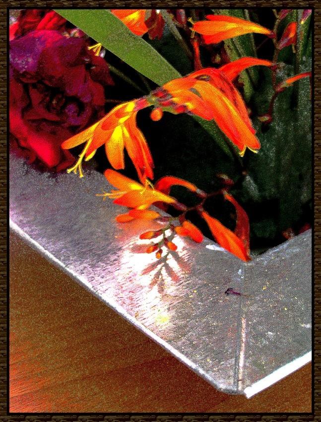 Le pot a fleurs.... 100_2710