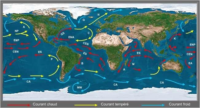 Les Courants Marins / CLIMAT / Courant Marin Océanique