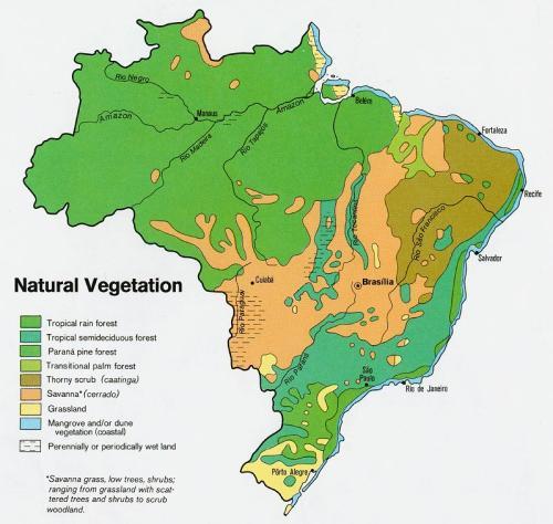 Déforestation Amazonie Mapa_v10