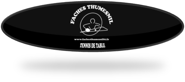 Faches Thumesnil Tennis de Table