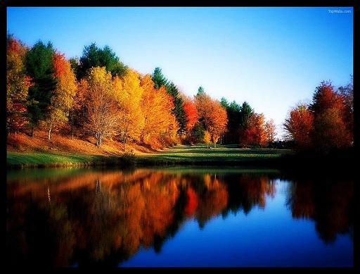 Autumn Autumn11