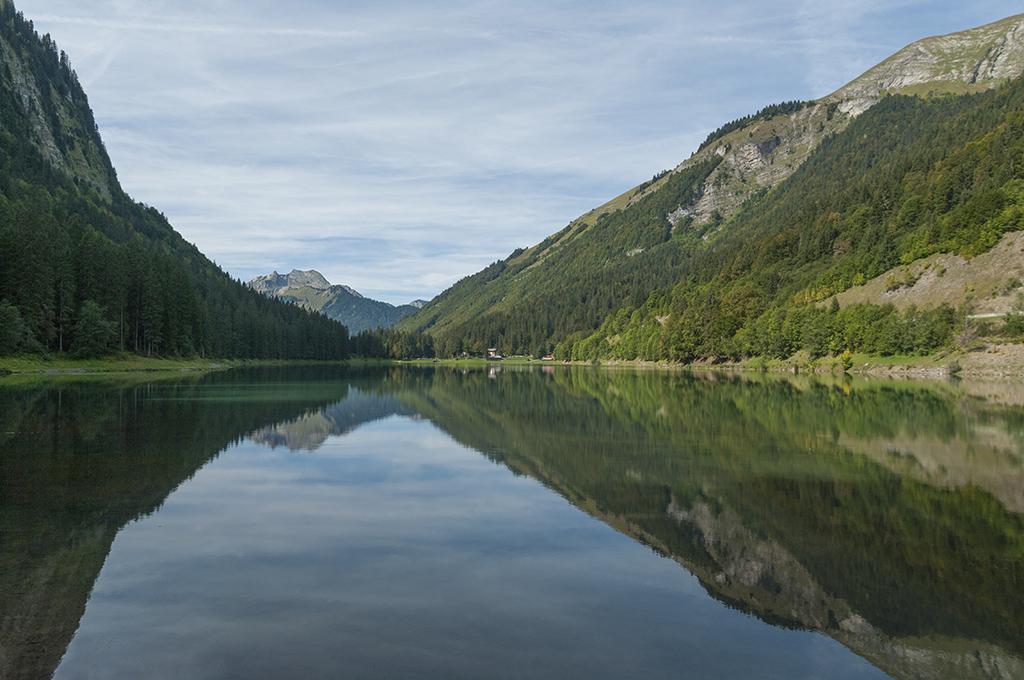 Lac ... 22091310
