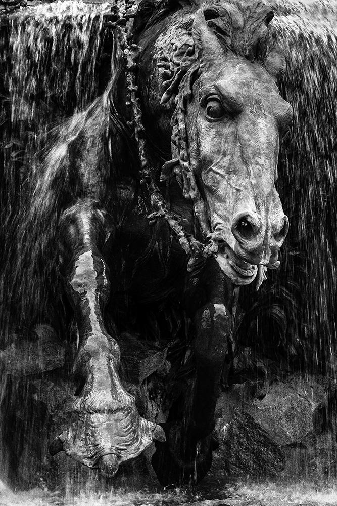 [Noir et Blanc] Cheval de l'Apocalypse .... 27011910