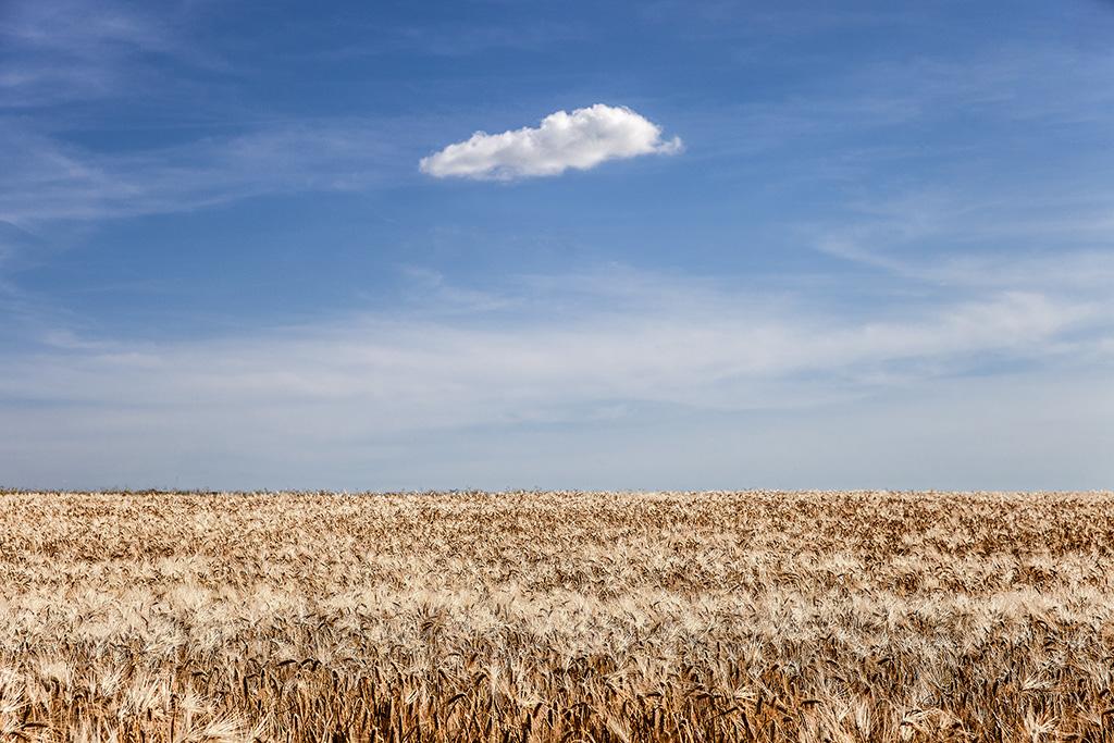 Le nuage .... Img_5810