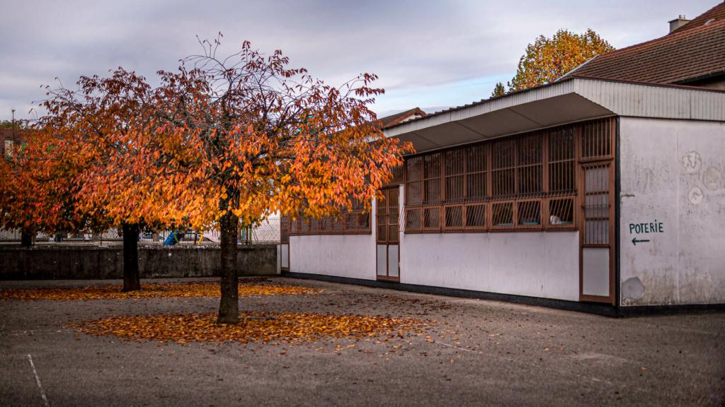 Confinement 1 photo jour à partir du 1 novembre - (FIL OUVERT A TOUS) P1120016