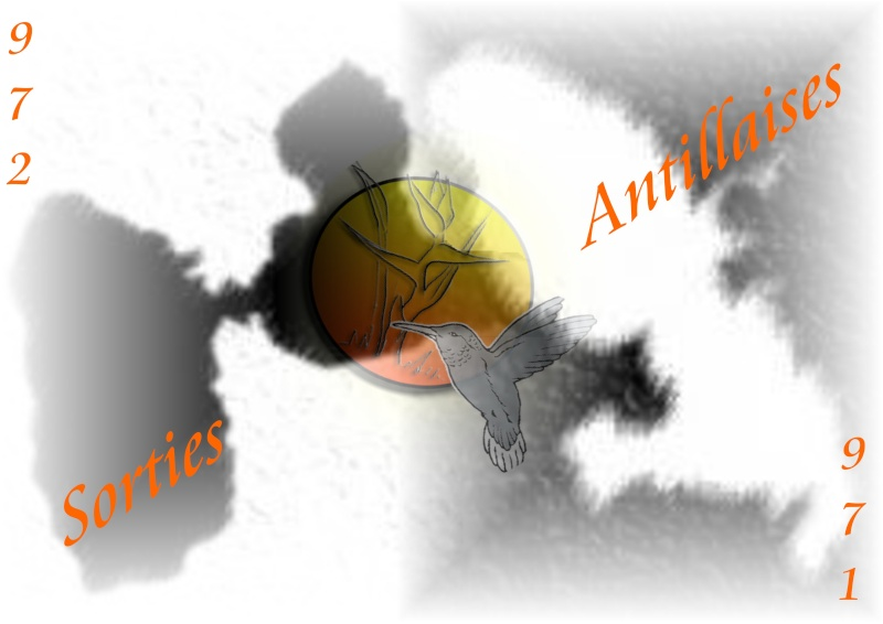 Sorties Antillaises