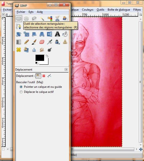 the gimp (logiciel libre) : Comment recadrer une img? The_gi12