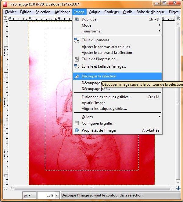 the gimp (logiciel libre) : Comment recadrer une img? The_gi14