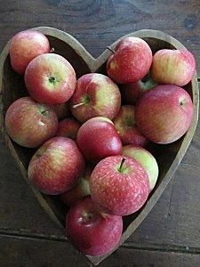 DOSSIER A-Z: Alimentation, compléments alimentaires et produits naturels - Page 3 Pommes10