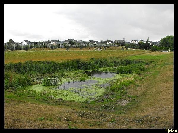 Visites dans les Parcs et Jardins Dscf5113